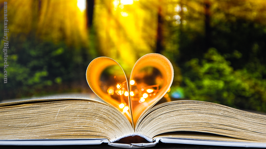 Book with love symbol isolated on forest nature background, Love books, love to read, love stories, heart shape from paper book, Romantic background with the book